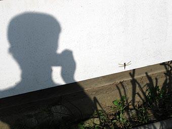 ito-20101123b.jpg