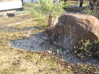ito-20090118a.jpg