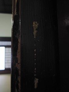 ito-20100810c.jpg