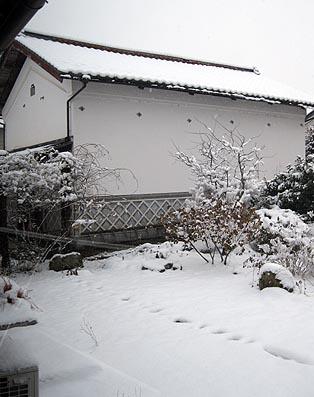 ito-20110211b.jpg